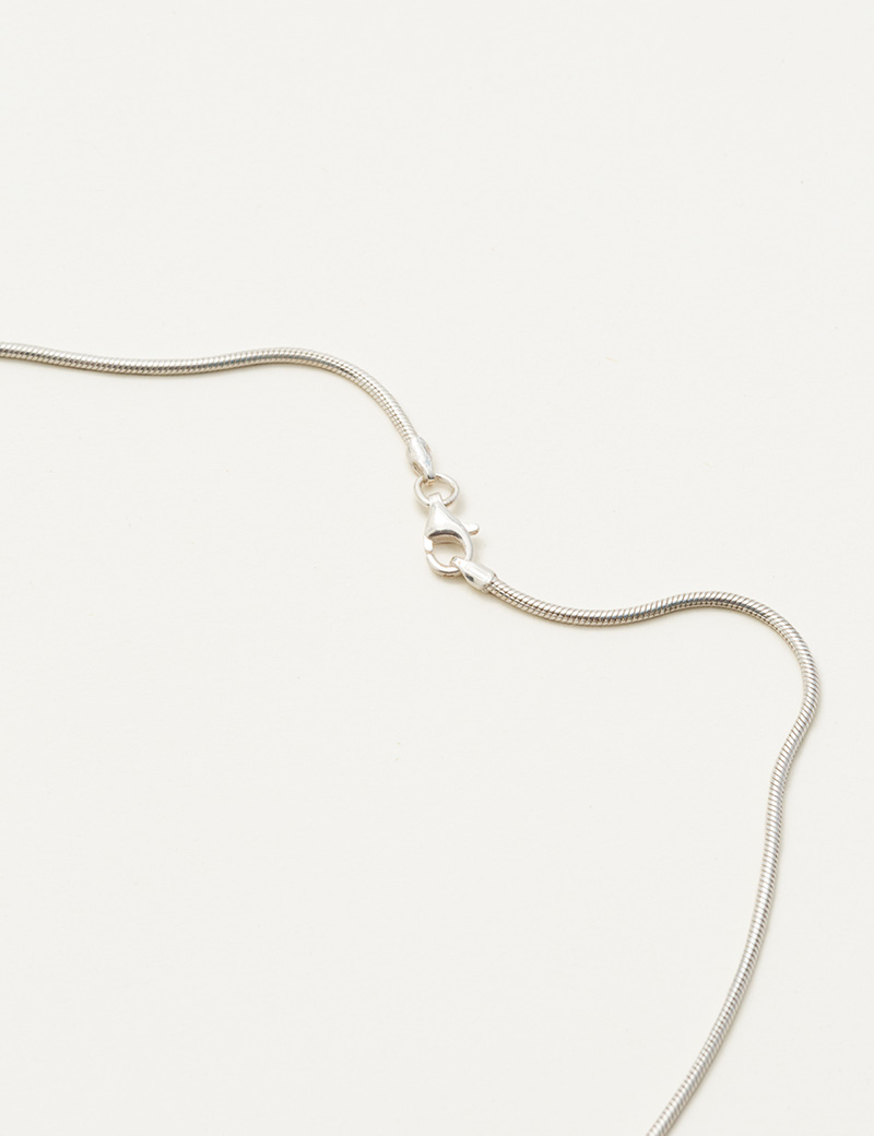 Kathleen Whitaker Snake Chain Necklace Silver